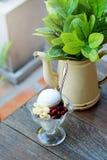 Kokosowego mleka lody w Tajlandia tradycyjnym stylu na drewnianym stołowym tle dekoruje z rośliną w starym cynkowym teapot fotografia royalty free