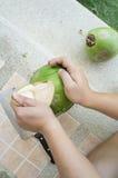 Kokosowej napój łzy owoc inside łupy w oddaleniu pojęcie Obraz Royalty Free