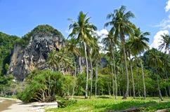 Kokosowi drzewa przy Tonsai plażą blisko Railay Zdjęcia Royalty Free