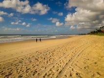 Kokosowi drzewka palmowe na białej piaskowatej plaży w Porto De Galinhas, Pernambuco, Brazylia zdjęcia stock