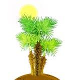 Kokosowi drzewka palmowe odizolowywający na bielu Zdjęcie Royalty Free