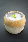 Kokosowy agar, azjatykci deser Fotografia Stock