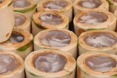 Kokosowy agar wyśmienicie, azjatykci deser Fotografia Stock