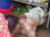 Kokosowy bubel przy wiejskim ulicznym jedzeniem obrazy stock
