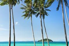 Kokosowy drzewo i morze Obrazy Stock