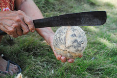 kokosowy grater Zdjęcia Stock