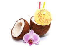 Kokosowy koktajl zdjęcie royalty free