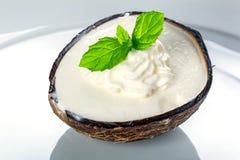 Kokosowy lody Obrazy Royalty Free