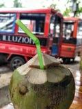 Kokosowy napój Zdjęcie Royalty Free