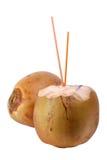 kokosowy napój Obraz Stock