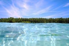 Kokosowych drzew horyzont zdjęcia stock