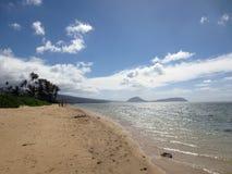 Kokosowych drzew linii Kahala plaża Zdjęcia Stock