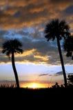 kokosowych kolorowych nadmiernych palm sylwetkowy zmierzch Fotografia Stock