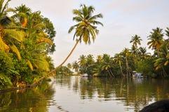 Kokospalm över Kerala baksidavatten Alleppey Klickat från husfartyget royaltyfri foto