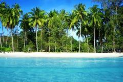 Kokospalm en blauwe overzees Stock Fotografie