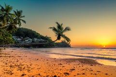 Kokospalmen bij zonsondergang over tropisch strand royalty-vrije stock afbeelding