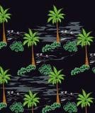 Kokospalmen in de zomer aan Paradijseiland en een zwarte achtergrond Stock Foto's
