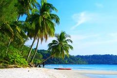 Kokospalmenstrand Stock Afbeeldingen