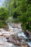 Kokra river in the foothills Royalty Free Stock Image