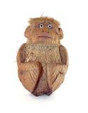 Koks małpa Fotografia Royalty Free