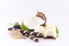 Koks, skorupy i Kokosowi cukierki, Obraz Royalty Free
