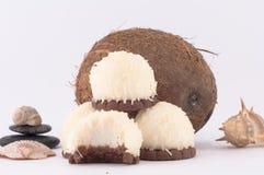Koks, skorupy i Kokosowi cukierki, Obraz Stock