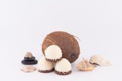 Koks, skorupy i Kokosowi cukierki, Zdjęcie Stock