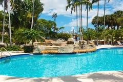 Koks zieleni drzewka palmowe pod s?o?cem, basen z b??kitne wody, tropikalny pi?kny t?o Lato, turystyka, wakacje, obrazy stock