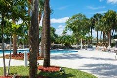 Koks zieleni drzewka palmowe pod s?o?cem, basen z b??kitne wody, tropikalny pi?kny t?o Lato, turystyka, wakacje, fotografia stock
