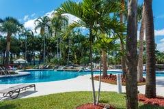 Koks zieleni drzewka palmowe pod s?o?cem, basen z b??kitne wody, tropikalny pi?kny t?o Lato, turystyka, wakacje, zdjęcia stock