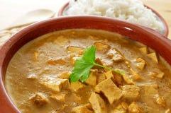 Koksu i tofu curry Obrazy Stock