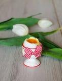 Kokt ägg i äggkopp med tulpan Royaltyfria Bilder