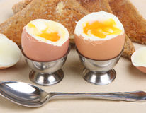 Kokt ägg och rostat bröd arkivfoto