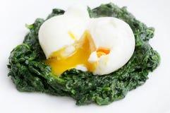Kokt ägg och spenat Arkivbild