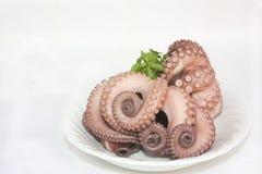kokt bläckfisk Arkivfoto