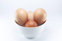Ägg med bakgrund Royaltyfri Foto