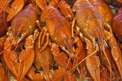 Kokt crawfish Royaltyfria Bilder