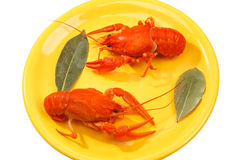kokt crawfish plate röd yellow Royaltyfria Bilder