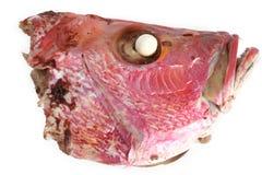 kokt fiskhuvud Arkivbild