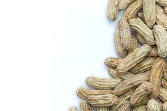 kokt jordnötter Royaltyfria Bilder