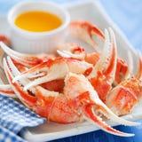 Kokt krabba Royaltyfria Bilder