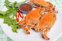 kokt krabbor Royaltyfri Fotografi