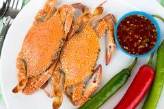 kokt krabbor Arkivbilder