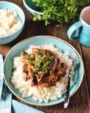 Kokt lever i en s?s med l?ken, morot och persilja och kokta ris royaltyfria bilder