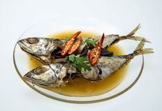 Kokt makrillfisk i salt soppa Royaltyfri Bild