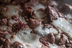 kokt meat Fotografering för Bildbyråer