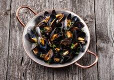 kokt musslor Royaltyfri Foto