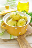 Kokt ny potatis royaltyfri fotografi