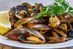 Kokt och kryddad musslamaträtt arkivbild