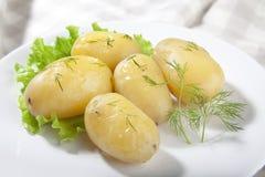 kokt potatis royaltyfri fotografi